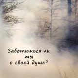 Ум_16512_491512834219936_865525345_n_1