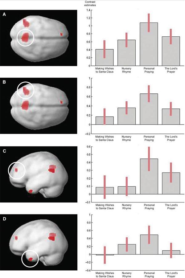 Слева: томограммы мозга во время молитв («Отче Наш» и молитвы о персональных нуждах) и контрольных процедур — обращений к Санта-Клаусу и произнесения детского стишка. Красным обозначены те области мозга, которые больше активируются при молитве, чем при обращении к Санта-Клаусу. A — предклинье (по Бродману поле 7), B — участок коры в зоне височно-теменного контакта (поля 39/40), C — передне-медиальная префронтальная кора (поле 10), D — участок коры в зоне височного полюса (поле 38). Справа: гистограммы, показывающие размеры соответствующих активированных участков мозга (слева направо: просьба к Санта-Клаусу, детский стишок, личная молитва, «Отче Наш»).