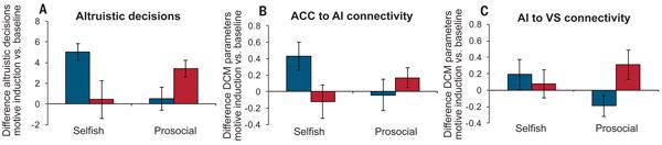 Разница в силе воздействия разных мотиваций — эмпатии (синие столбики) и реципрокного альтруизма (красные столбики) — на эгоистов и социально ориентированных личностей. А — разница между числом решений отдать деньги «активной демонстраторше» по сравнению с нейтральной у эгоистов (слева) и у просоциальных испытуемых (справа). На эгоистов больше действует сострадание, на просоциальных личностей — расчетливость. B — интенсивность связей между поясной корой и островком. С — интенсивность связей между островком и полосатым телом. Видно, что у эгоистов больше активируются связи, соответствующие эмпатии (на графике В), а у просоциальных личностей — связи, соотносимые с расчетливостью (на графике С).